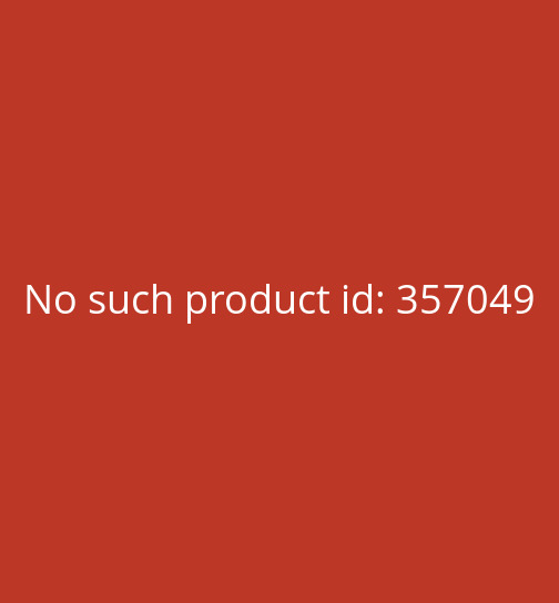 St. Aquilinus with dagger in the throat
